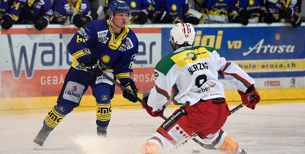 eishockey 1 liga