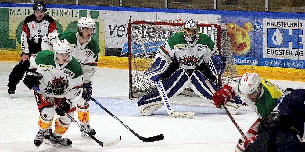 1. liga eishockey