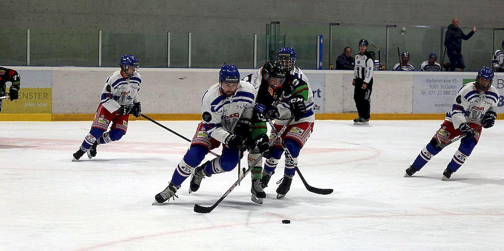 2. Eishockey Liga